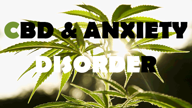 CBD anxiety disorder