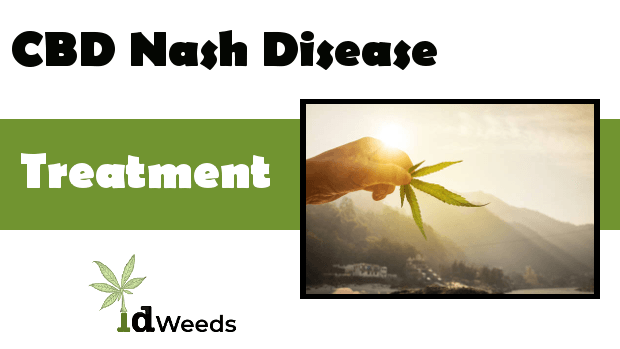 CBD for Nash Disease